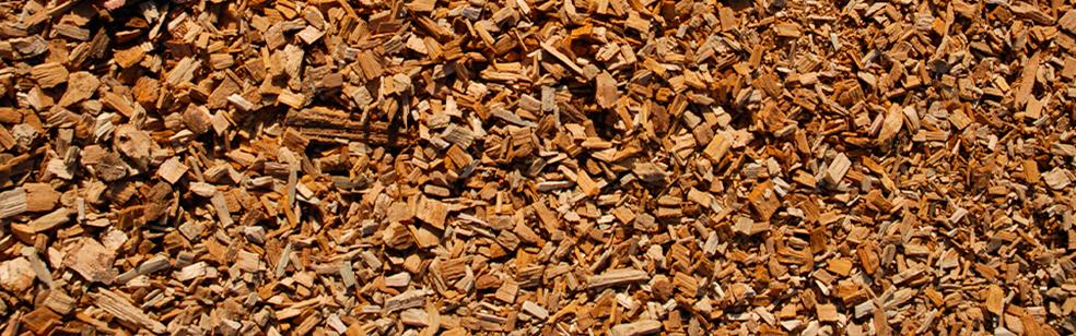 biomassa-e1384854532765