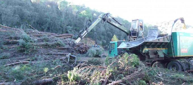 J. Famadas entra al sector de la biomassa