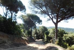Treballs a Can Cabot d'Amunt (Sant Andreu de Llavaneres)