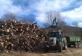 Comença l'estellat de la biomassa apilada