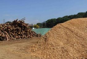 Producció de biomassa per a ús tèrmic