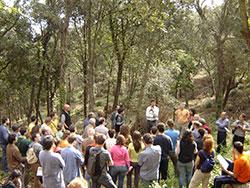 XXIV Jornades Tècniques Silvícoles (2007)
