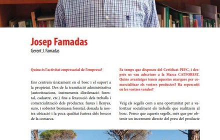 ENTREVISTA CATFOREST A LA REVISTA SILVICULTURA NÚM. 81